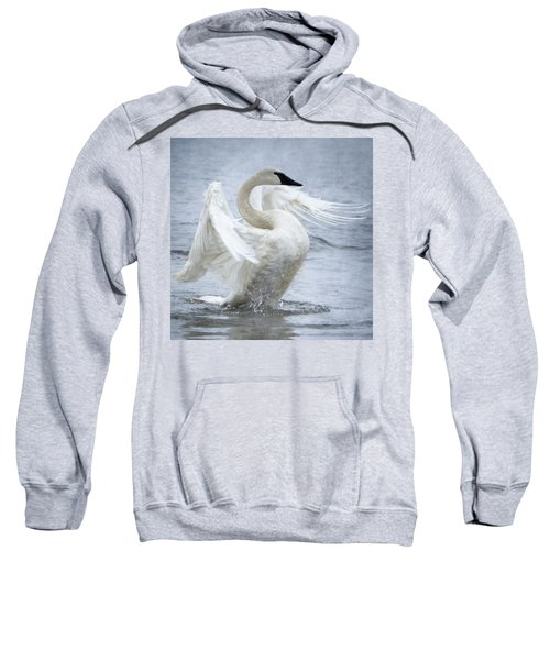 Trumpeter Swan - Misty Display 2 Sweatshirt
