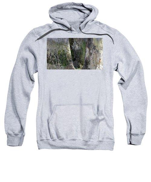 Trunk Trio Sweatshirt