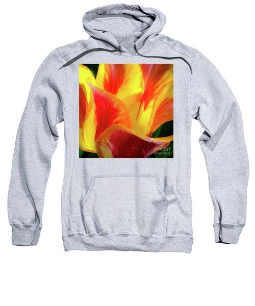 Tulip In Bloom Sweatshirt