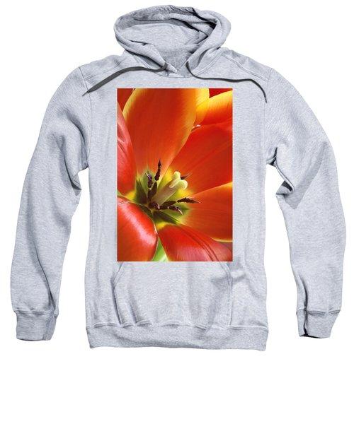 Tuliplicious Sweatshirt