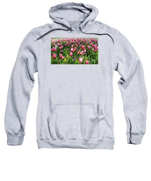 Tulips In Bloom Sweatshirt