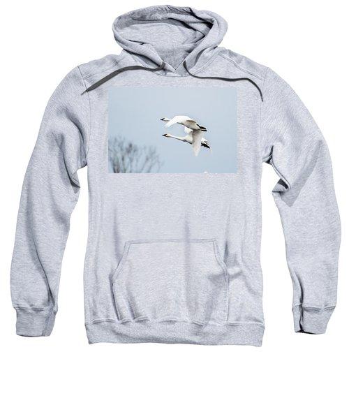 Tundra Swan Lift-off Sweatshirt