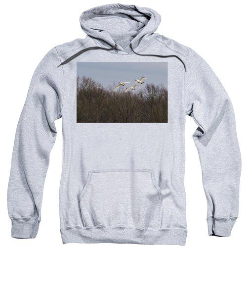 Tundra Swan Trio Sweatshirt