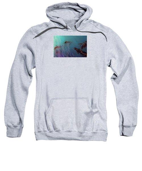 Turquoise Current And Seaweed Sweatshirt by Nareeta Martin