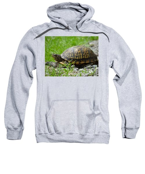Turtle Crossing Sweatshirt
