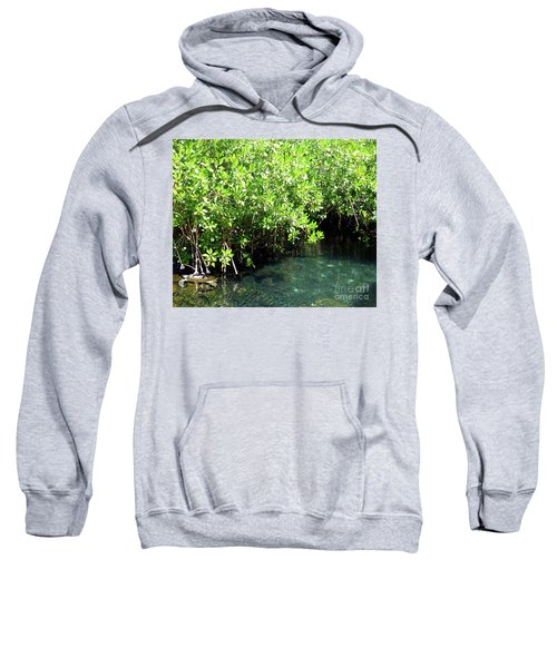 Sweatshirt featuring the photograph Turtle Swim by Francesca Mackenney