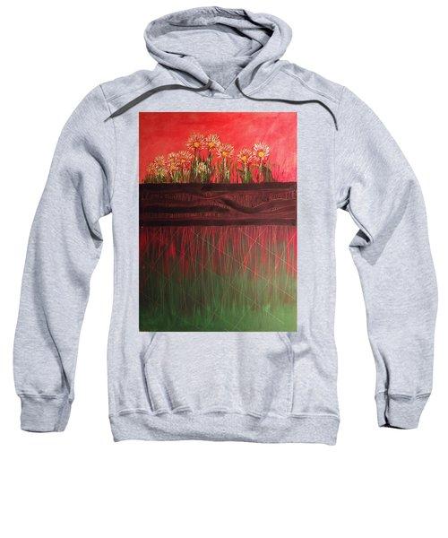 Twelve Daises In Window Box Sweatshirt