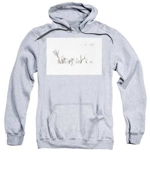 Twigs In Snow Sweatshirt