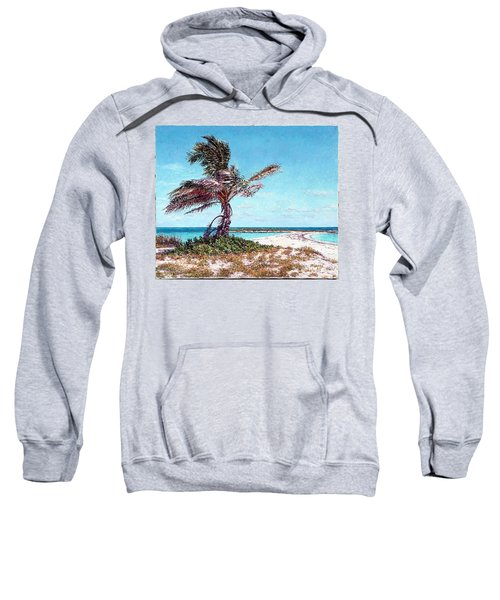 Twin Cove Palm Sweatshirt