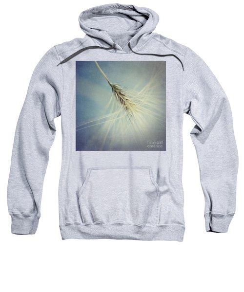 Twirling Sweatshirt