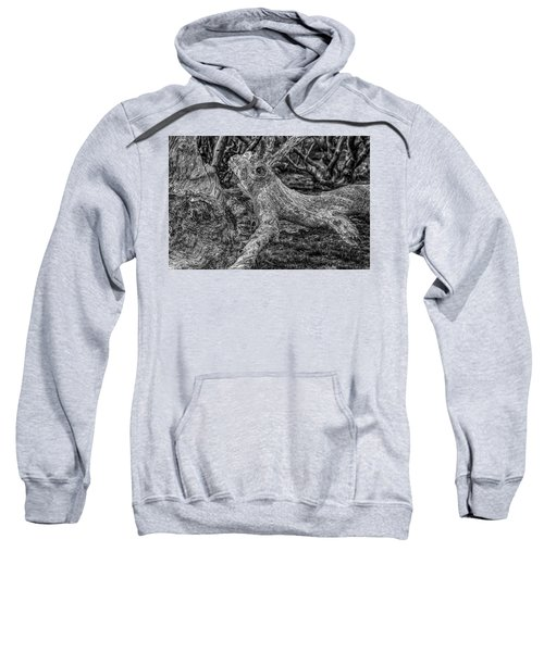 Twisted Sweatshirt