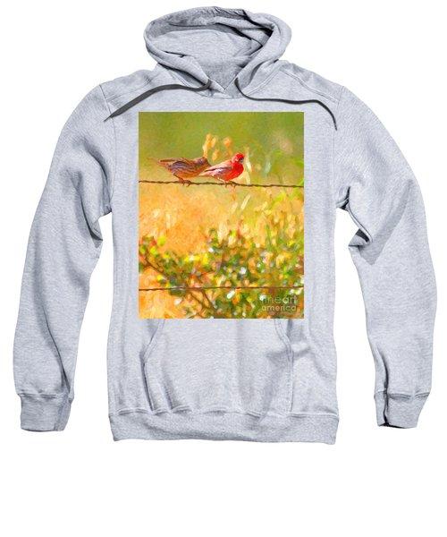 Two Birds On A Wire Sweatshirt