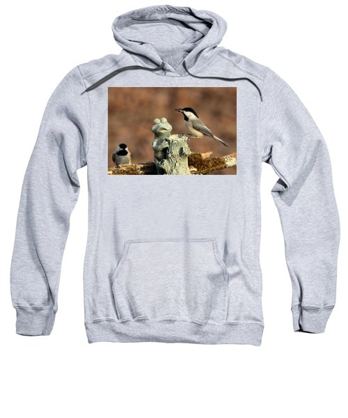 Two Black-capped Chickadees And Frog Sweatshirt