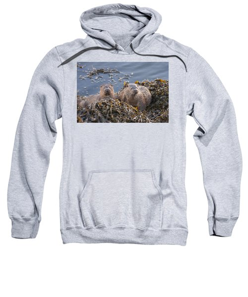 Two Young European Otters Sweatshirt