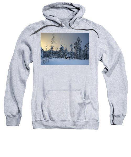 Ufo II Sweatshirt
