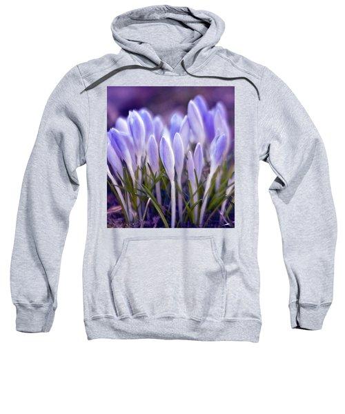 Ultra Violet Sound Sweatshirt
