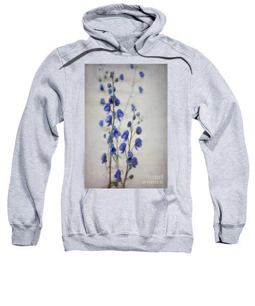 Ultramarine  Sweatshirt