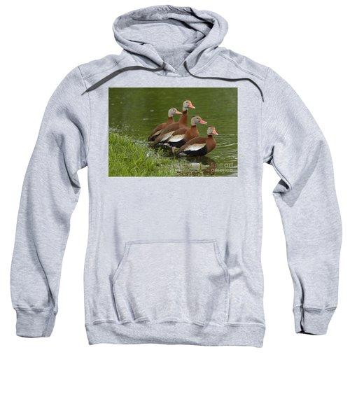 Unexpected Visitors Sweatshirt
