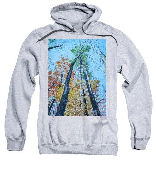 Up Into The Trees Sweatshirt