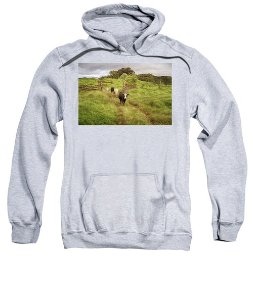 Upcountry Ranch Sweatshirt