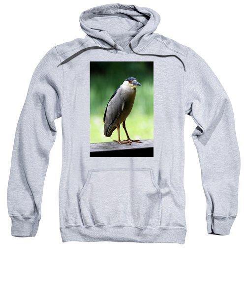 Upstanding Heron Sweatshirt