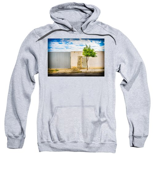 Urban Tree. Sweatshirt