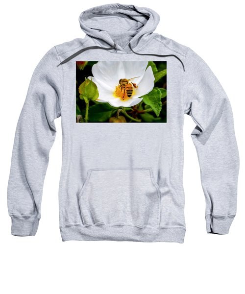 Vacaville Honey Bee Sweatshirt