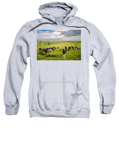 Valley Of The Cows Sweatshirt
