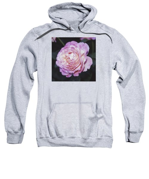 Velvia Rose Sweatshirt