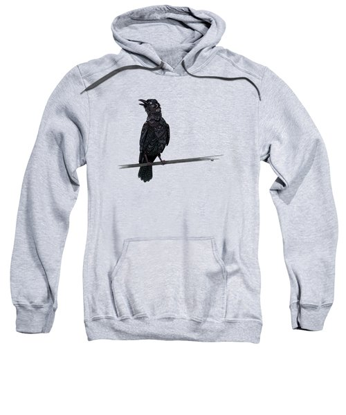 Verklempt Crow Sweatshirt by ZH Field