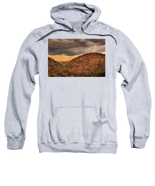 View From A Train Pnt Sweatshirt