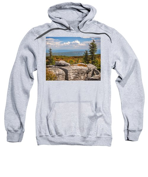 View From Bear Rocks 4173c Sweatshirt