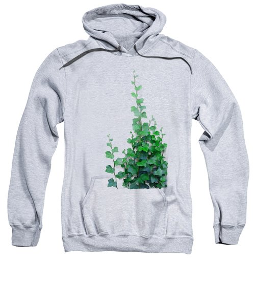 Vines By The Wall Sweatshirt