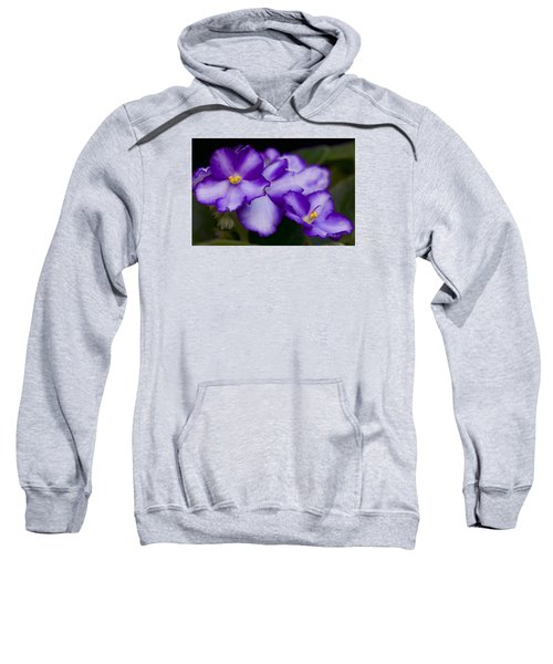 Violet Dreams Sweatshirt