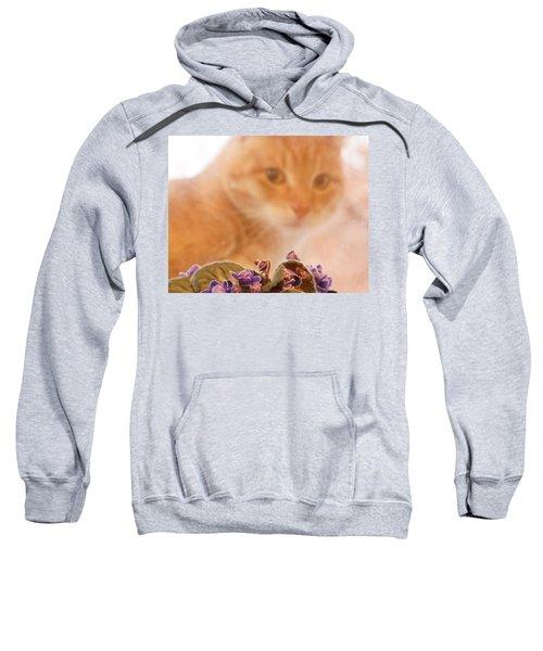 Violets With Cat Sweatshirt