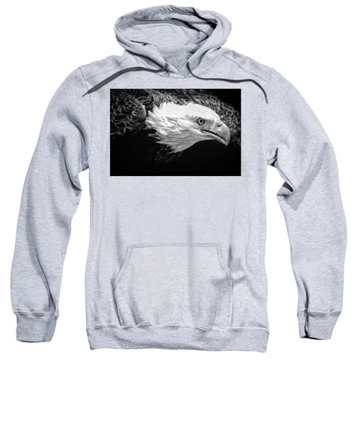 Visual Sweatshirt