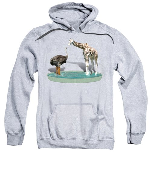 Wading Pool Sweatshirt by Gravityx9  Designs