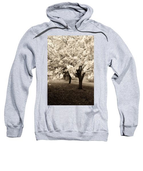Waiting For Sunday - Holmdel Park Sweatshirt