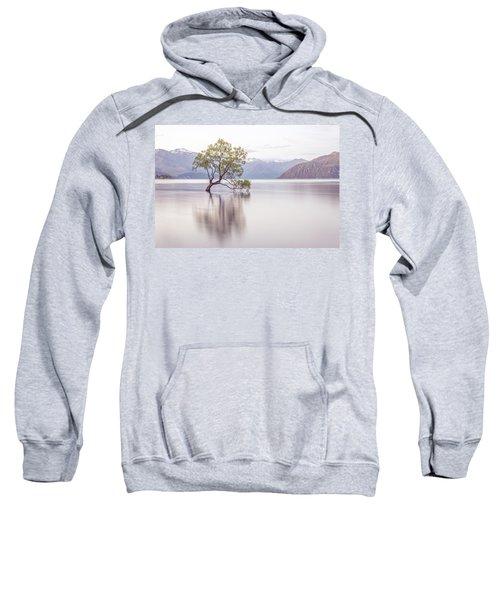 Wanaka Tree Sweatshirt