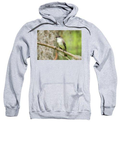 Warbler Sweatshirt