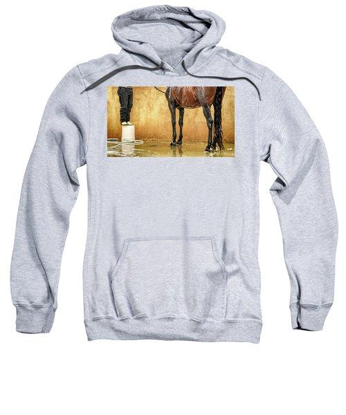Washing A Horse Sweatshirt