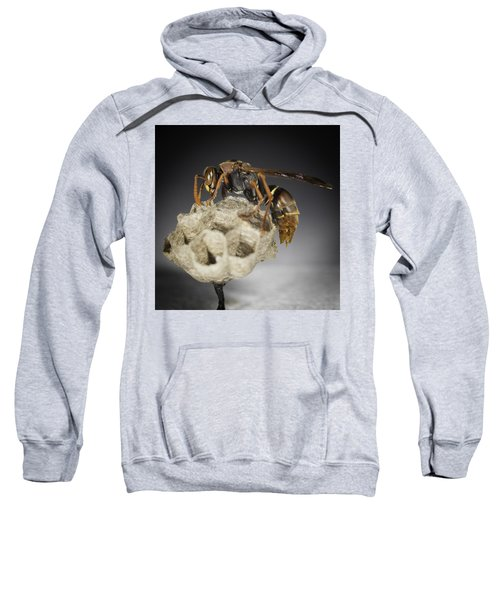 Sweatshirt featuring the photograph Wasp On A Nest by Chris Cousins