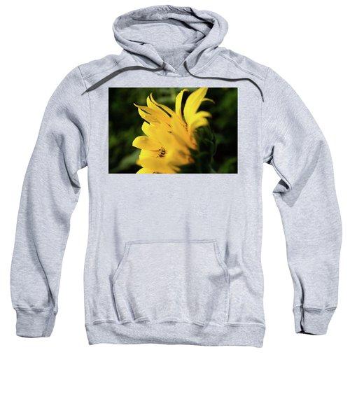 Water Drops And Sunflower Petals Sweatshirt