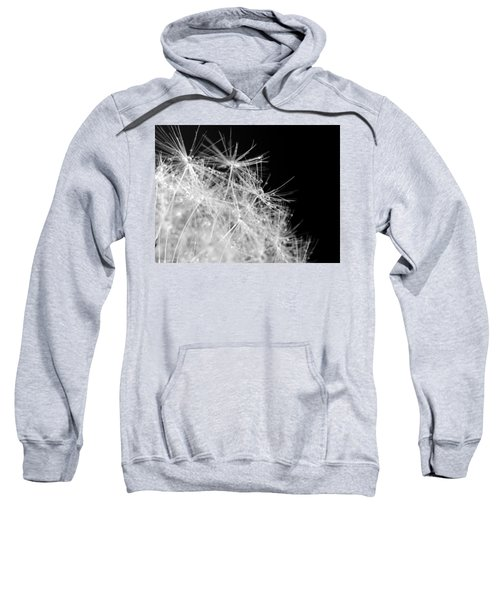 Water Drops On Dandelion Sweatshirt