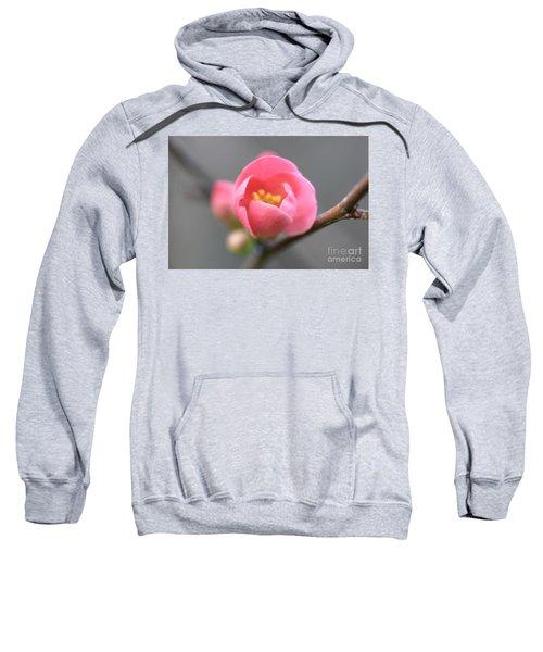 Welcoming Sweatshirt