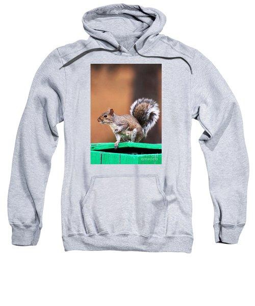 Well Fed Sweatshirt