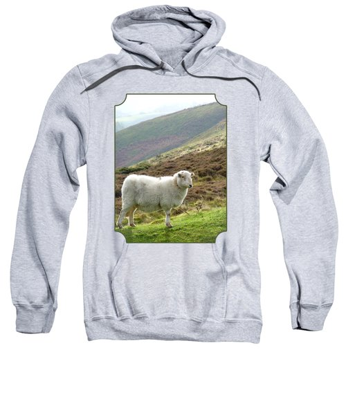 Welsh Mountain Sheep Sweatshirt