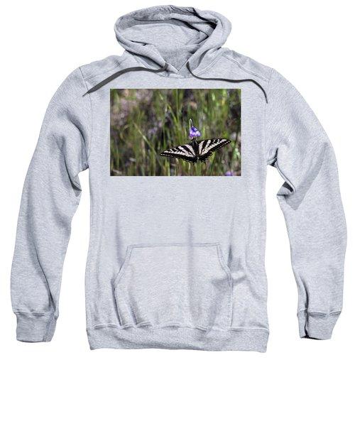 Western Tiger Swallowtail Sweatshirt