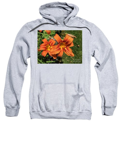 Wet Tiger Llilies Sweatshirt