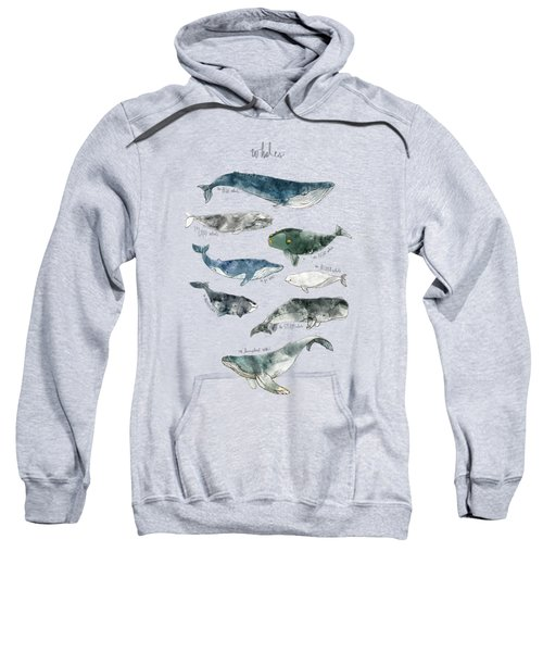 Whales Sweatshirt by Amy Hamilton